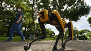 หุ่นยนต์สุนัข