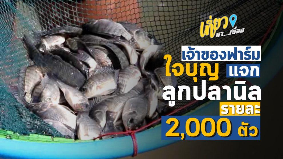 เจ้าของบ่อปลาใจบุญ แจกฟรีลูกปลานิลรายละ 2 พันตัว
